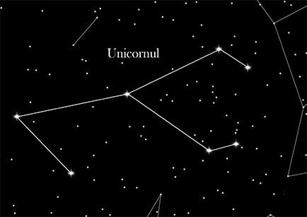 Unicornul
